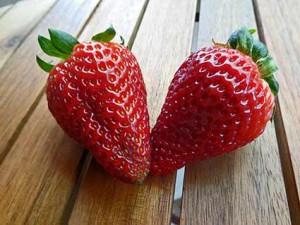 fodmap-erdbeeren
